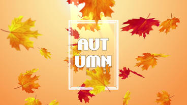 Autum Leaf Plantilla de Apple Motion
