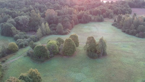 Drone fly up above misty summer end landscape with forest, trees grove and meadow, aerial view Footage