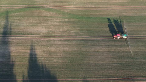 Agriculture tractor in evening spraying autumn time crop field with sprouts, aerial view Live Action
