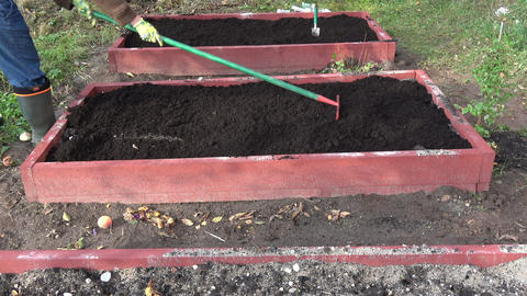 raking mould humus with rake in new wooden raised garden bed Live Action