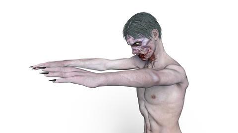 Zombie CG動画