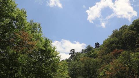 山を流れる雲 ビデオ