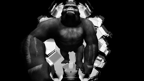 SLowly Striding Gorilla Dark Shining Flashing Background VJ Loop Live Action