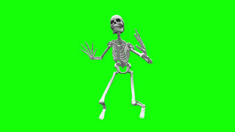 Skeleton HD Video CG動画素材