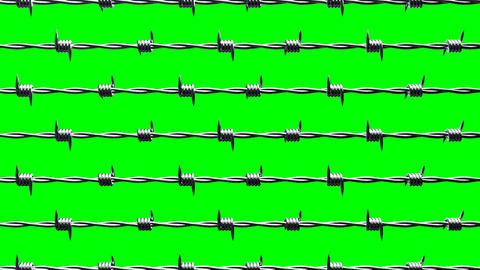 Barbwire on green chroma key CG動画