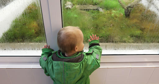 Baby is watching how plants and moss grow in a greenhouse 영상물