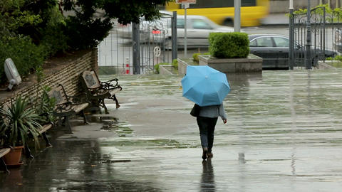 Hiding from rain people rushing about their business, meteorological forecast Footage