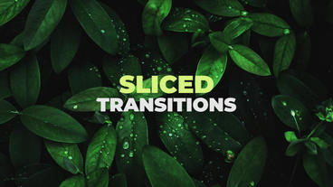 Sliced Blur Transitions Premiere Proテンプレート