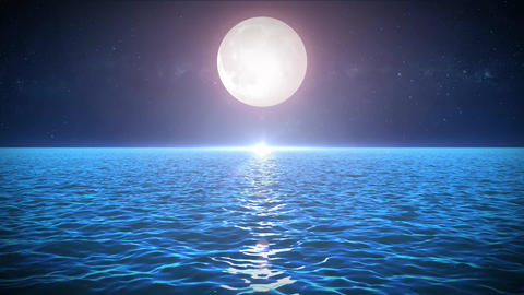 Seascape In The Moonlight Background Animation