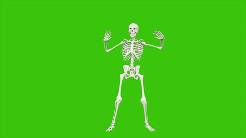 Skeleton dancing. Seamless loop animation on green screen Animation