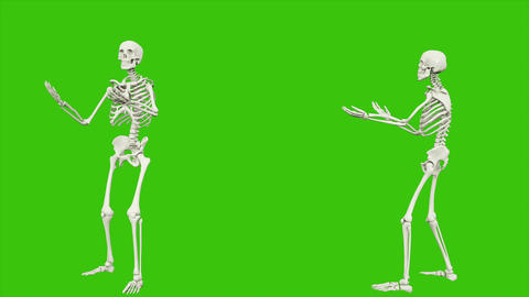 Skeleton talking. Seamless loop animation on green screen Animation