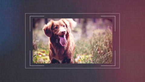 Photography Opener After Effects Template