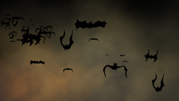 Bats flying against Halloween sky Footage
