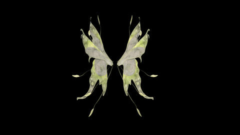 wings flap, loop, animation, transparent background Footage