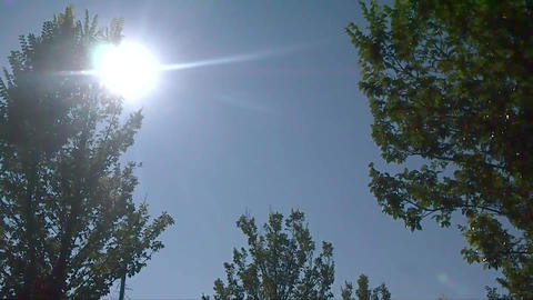 The big sun behind trees Stock Video Footage