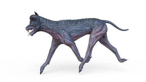 DOG Walk GIF