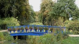 Blue bridge in the Muskau park, famous English garden in Europe. Park Muzakowski Footage