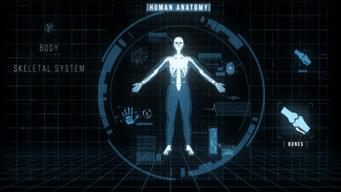 Futuristic Interface of Anatomy Systems Animación