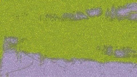 Flickering Coloured Background 4 Animation