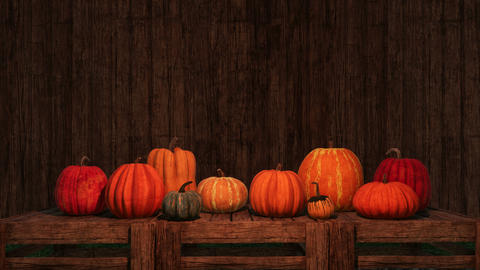 Thanksgiving pumpkins on copy space wooden background ビデオ