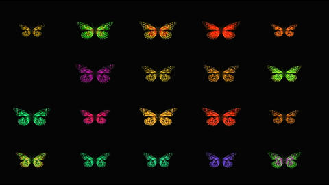 BUTTERFLY BUTTON SET GIF