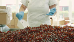 Factory worker packing candies. Candy factory Footage