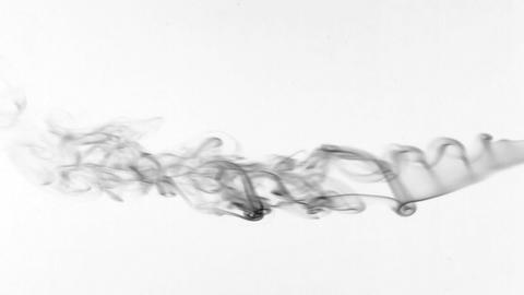 Beautiful twists of black smoke on a white background. Abstract Footage