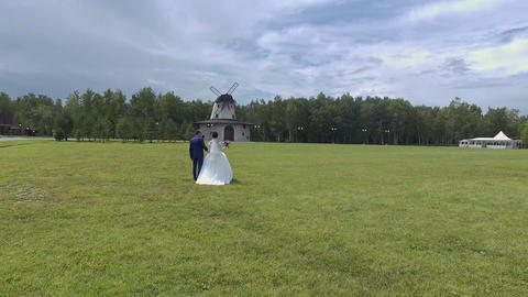 Aerial view of wedding couple walking on the grass Footage