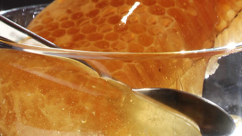 Honeycombs Stock Video Footage