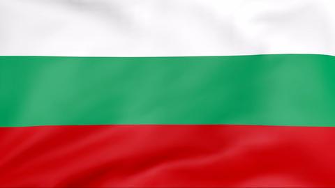 Flag Of Bulgaria Stock Video Footage