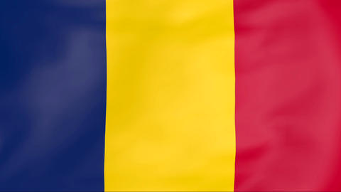 Flag Of Chad stock footage
