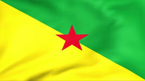 Flag Of Guyane Stock Video Footage