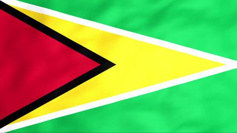 Flag Of Guyana Stock Video Footage