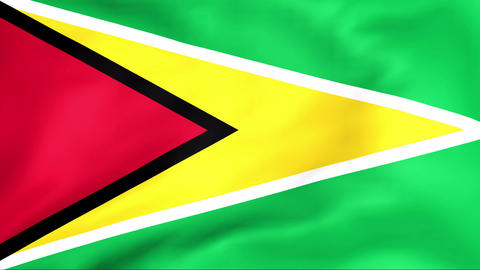 Flag Of Guyana Stock Video Footage