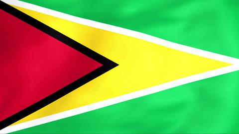 Flag Of Guyana Animation