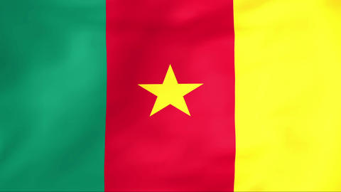 Flag Of Cameroon Stock Video Footage