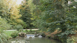 Brook at the Muskau Park. English garden on the border of Poland and Germany Footage