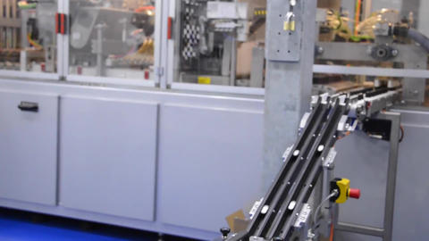 Robotic Arm Working At Automated Production Line. Modern Technology2 Live Action