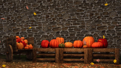 Thanksgiving autumn pumpkins stone wall background Animation