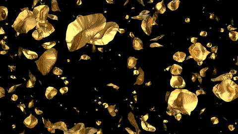 Flying Romantic golden metal Rose Flower Petals Falling Alpha Channel Loop Animation