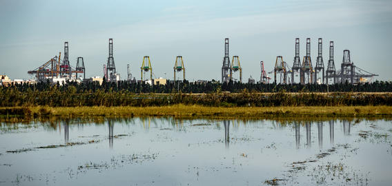 Huge industrial cranes in the horizon reflected to lake フォト
