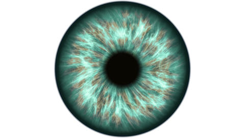 Green human eye dilating and contracting. Very detailed extreme close-up of iris Live Action