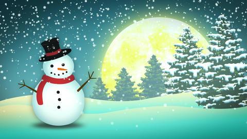 Holidays Snowman Landscape Stock Video Footage