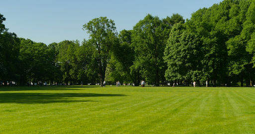 people walking on beautiful green park ビデオ