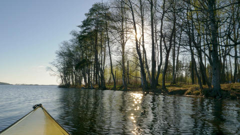 Kayaking near shore trees in spring Footage