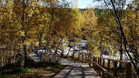 Hiking trail to the waterfall, autumn journey Live Action