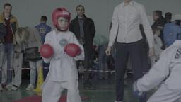 Fight Taekwondo among children. Sparring. Children's sports Footage
