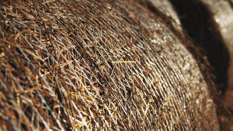 Close up packed haystacks rolls hay bales isolated Live Action