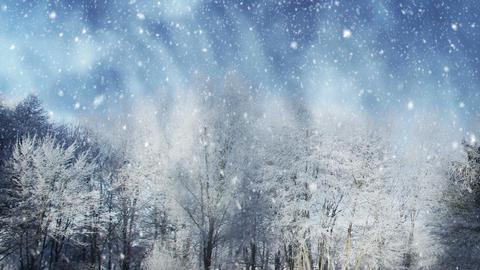 Winter Scenery Animation