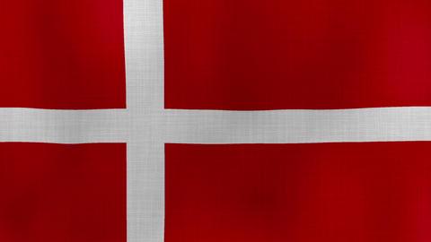 Flag Denmark 01 ライブ動画